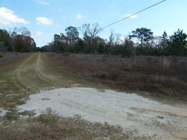 4 75 acres in Interlachen, Putnam County, Florida - Wake